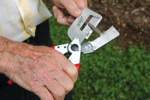 Использование прививочного секатора для прививки деревьев
