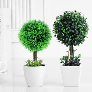 Многолетние деревья