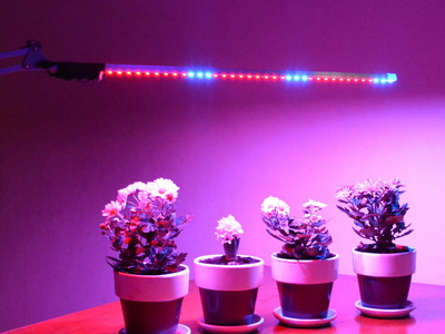 Лампа подсветка для цветов