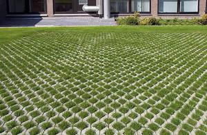 Преимущества газонной решетки